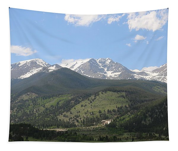 Tapestry featuring the photograph Rocky Mountain National Park - 3  by Christy Pooschke