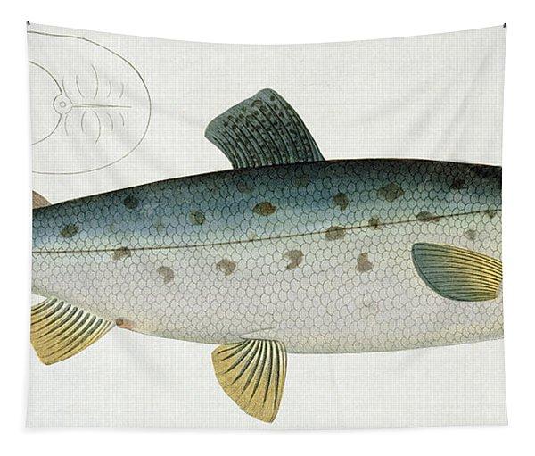 Salmon Tapestry