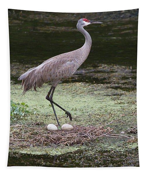Sandhill Crane And Eggs Tapestry