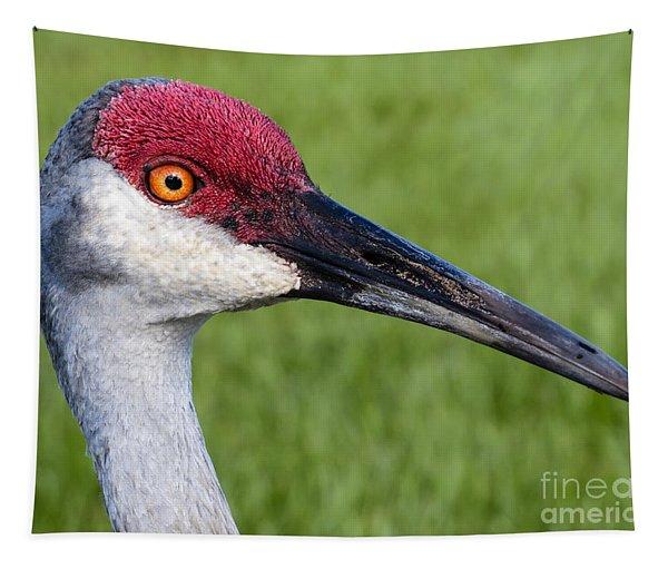 Sandhill Crane Portrait Tapestry