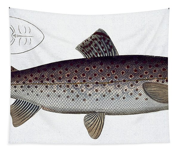 Sea Trout Tapestry