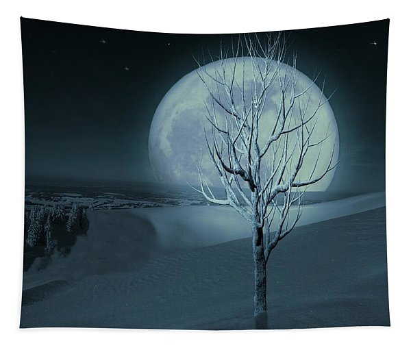 Silent Winter Evening  Tapestry