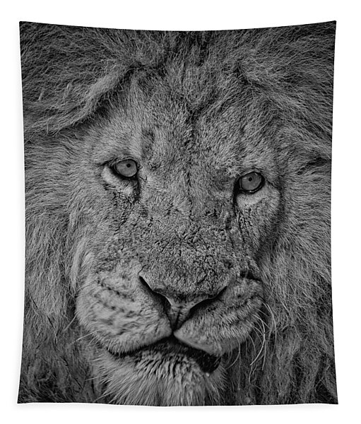 Silver Lion Tapestry