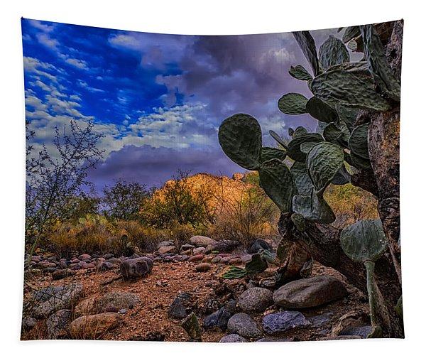 Sonoran Desert 54 Tapestry