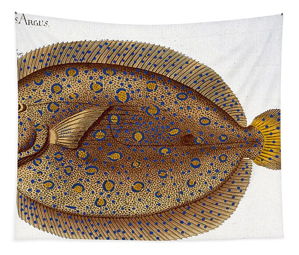 The Argus Flounder Tapestry