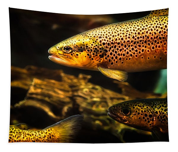Trout Swiming In A River Tapestry