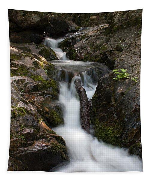 Upper Pup Creek Falls Tapestry