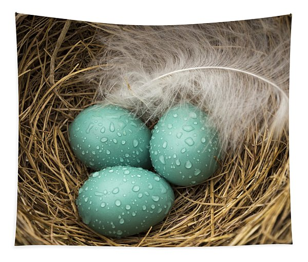 Wet Trio Of Robins Eggs Tapestry