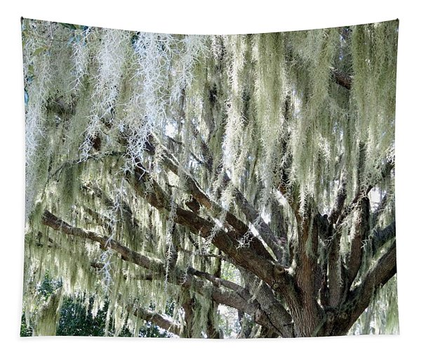 Whispering Oaks Tapestry