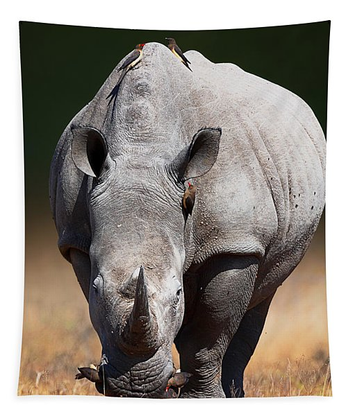 White Rhinoceros  Front View Tapestry
