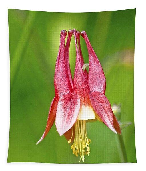 Wild Columbine Flower Tapestry