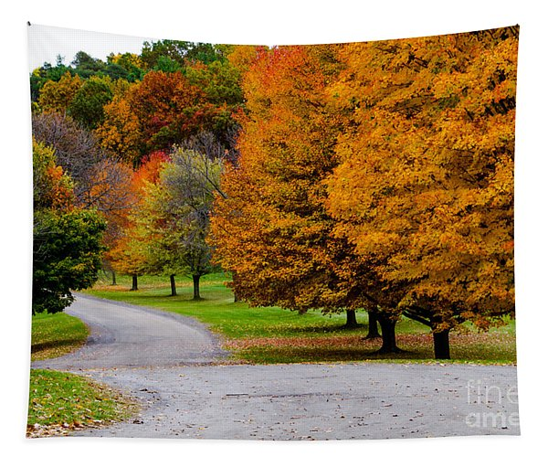 Winding Road Tapestry