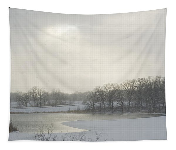Winter Lake And Forest Tapestry
