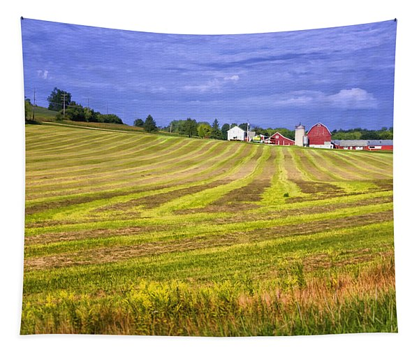 Wisconsin Dawn Tapestry