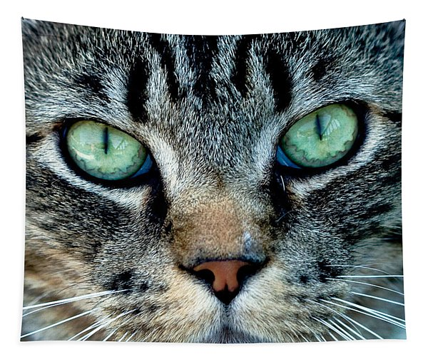 Cat Face Tapestry