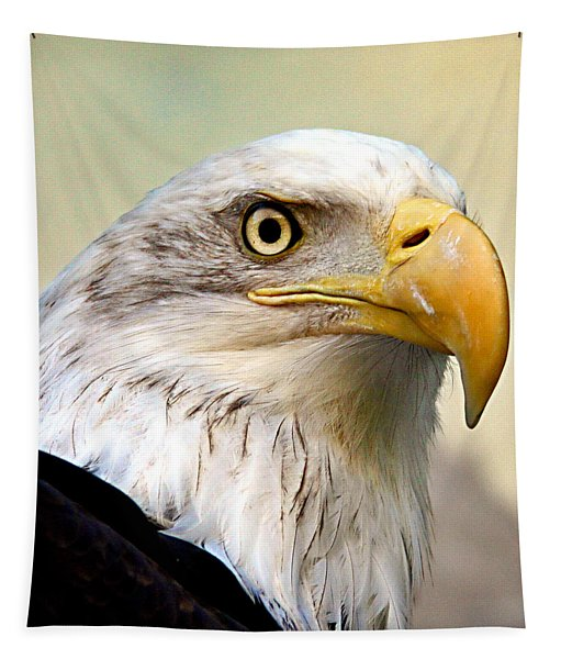 Eagle Portrait Tapestry
