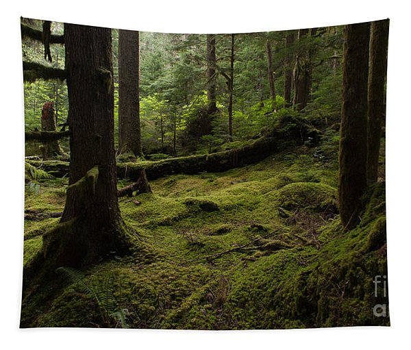 Quietly Alive Tapestry