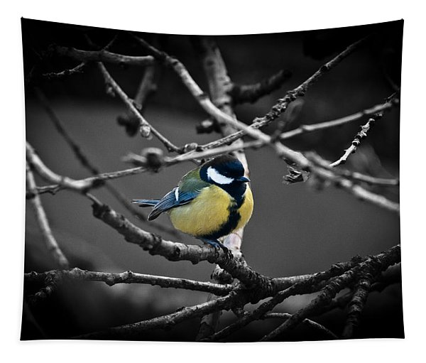 Selective Bird Tapestry