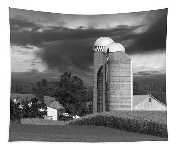 Sunset On The Farm Bw Tapestry