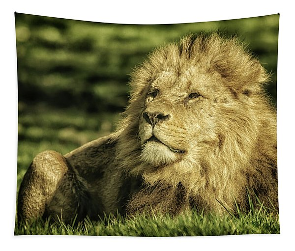 King Tapestry