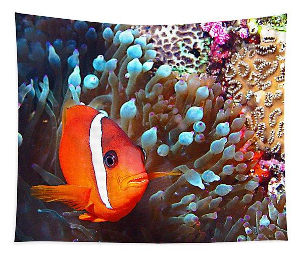 Nemo Tapestry