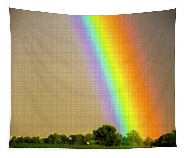 Tapestry featuring the photograph A Spectrum Of Nebraska 002 by NebraskaSC