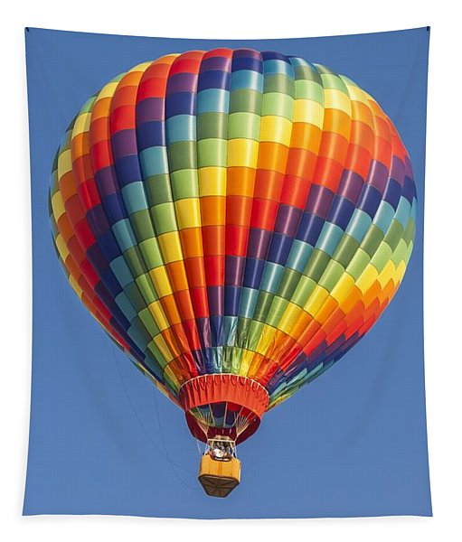 Ballooning In Color Tapestry
