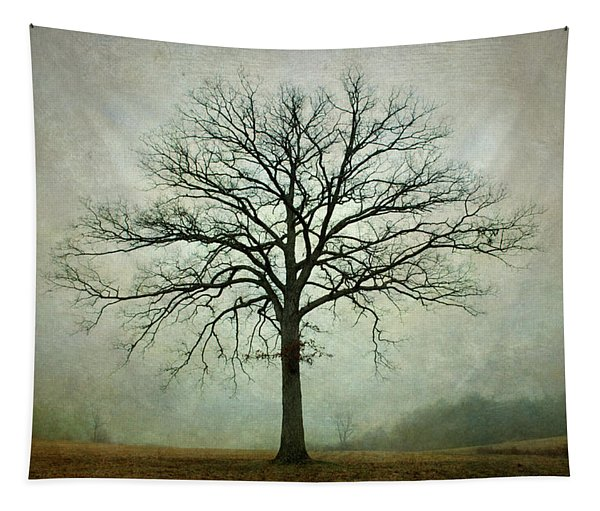 Bare Tree And Fog Tapestry