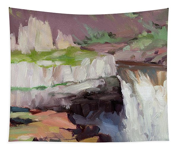 Beholding Palouse Falls Tapestry
