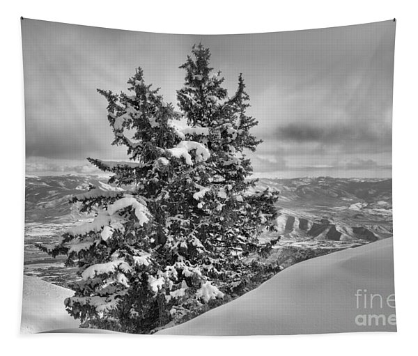 Between Mountains And Snow Drift Black And White Tapestry