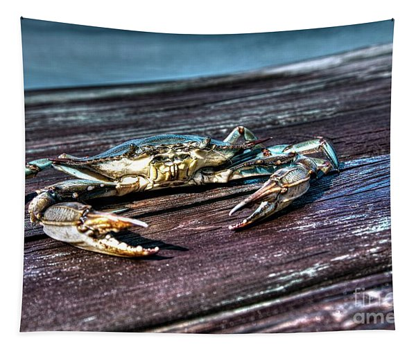 Blue Crab - Above View Tapestry