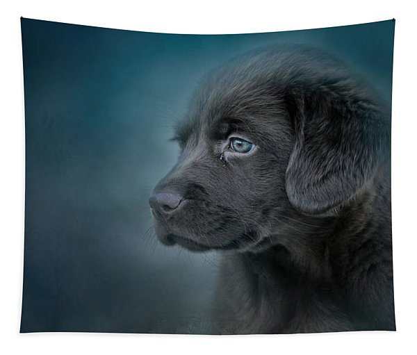 Blue Eyed Puppy Tapestry