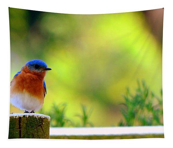 Bluebird Tapestry