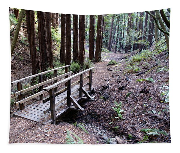 Bridge In The Redwoods Tapestry