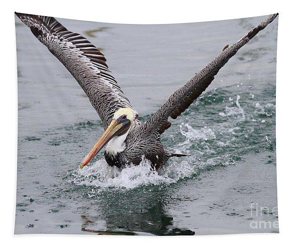 Brown Pelican Landing On Water . 7d8372 Tapestry