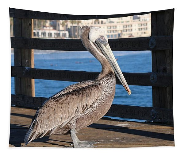 Tapestry featuring the photograph Brown Pelican On Oceanside Pier  by Christy Pooschke