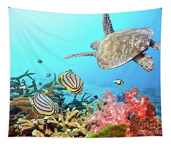 Butterflyfishes And Turtle Tapestry