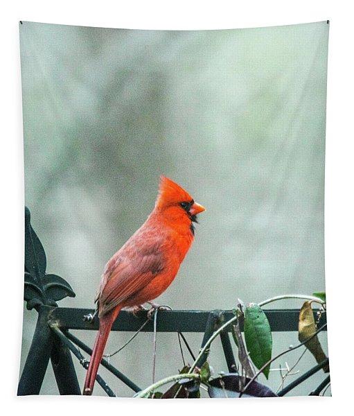 Cardinal On Trellis Tapestry