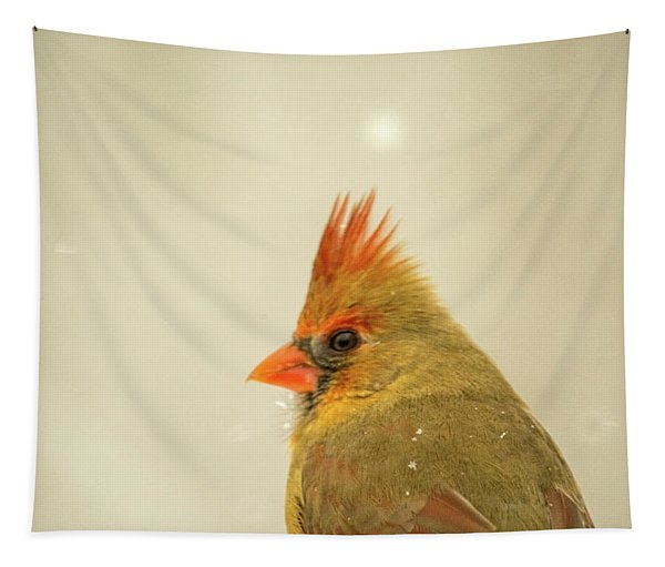 Cardinal With Punk Hair Style Tapestry