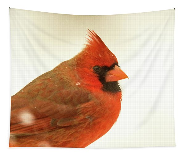 Cardinal With Snowflakes Tapestry