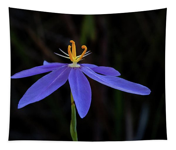 Celestial Lily Tapestry
