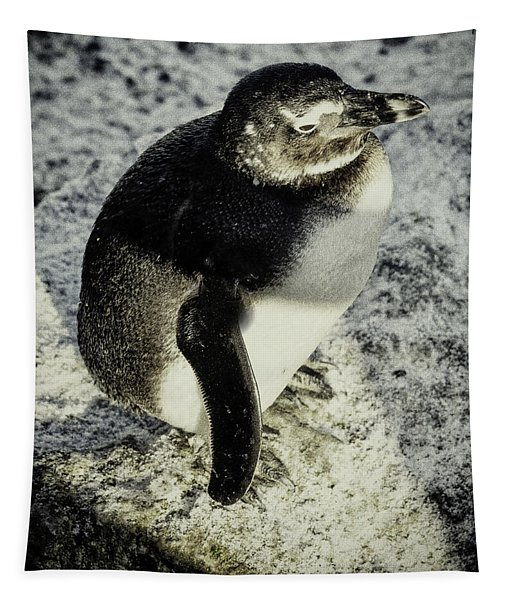 Chillypenguin Tapestry
