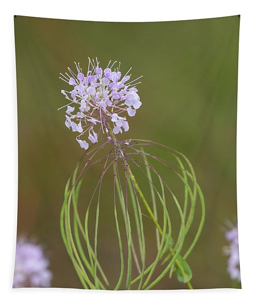 Clasping Warea Tapestry