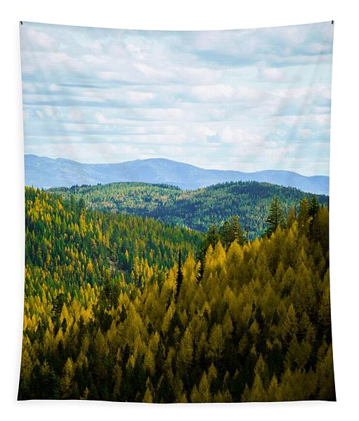 Colors Of Sherman's Pass Tapestry