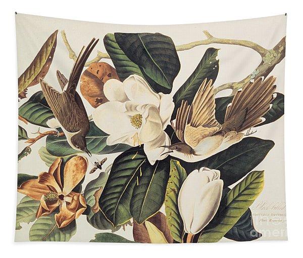 Cuckoo On Magnolia Grandiflora Tapestry