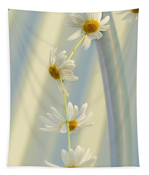 Daisy Chain Tapestry