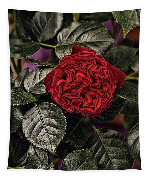 Deep Red Rose Tapestry