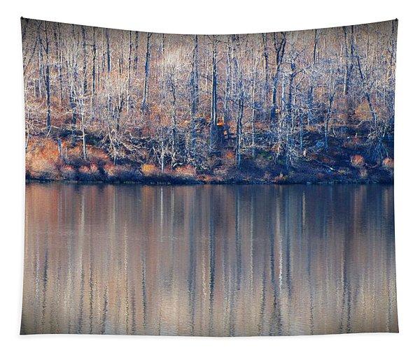 Desolate Splendor Tapestry