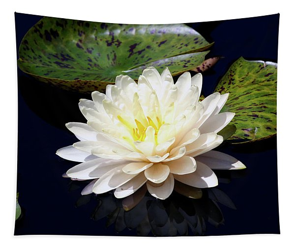 Dotty White Lotus And Lily Pads 0030 Dlw_h_2 Tapestry