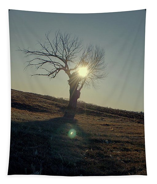 Field And Tree Tapestry